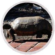 Florida Gopher Tortoise Round Beach Towel