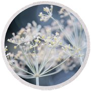 Flowering Dill Clusters Round Beach Towel