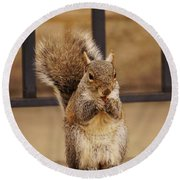 French Fry Eating Squirrel Round Beach Towel