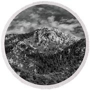 From Bog Spring Trail Round Beach Towel
