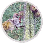 Gilded Flicker 4167 Round Beach Towel
