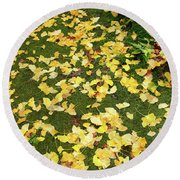 Ginkgo Biloba Leaves Round Beach Towel