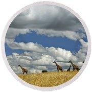 Giraffes On The Horizon Round Beach Towel