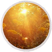 Golden Days Of Autumn Round Beach Towel