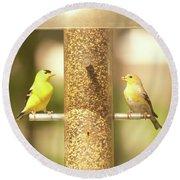 Goldfinch Round Beach Towel