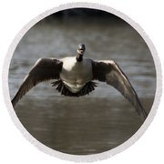 Goose In Flight Round Beach Towel