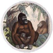 Gorillas Round Beach Towel