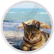 Gray Cat On The Background Of The Sea 1 Round Beach Towel