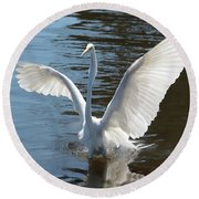 Great Egret Wings Round Beach Towel
