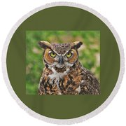 Great Horn Owl Nature Educator Round Beach Towel