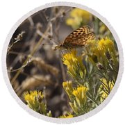 Great Spangled Fritillary 2 Round Beach Towel