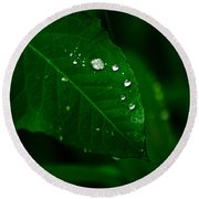 Green Leaf With Raindrops Round Beach Towel