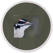 Hairy Woodpecker Male Round Beach Towel