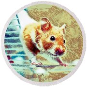 Hamster Round Beach Towel