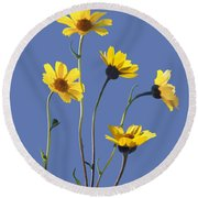 Happy Daisies II Round Beach Towel