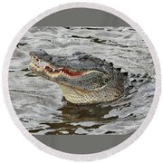 Happy Florida Gator Round Beach Towel