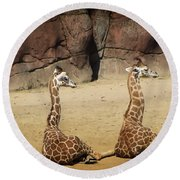 Having A Giraffe Round Beach Towel