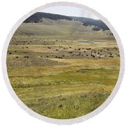 Hayden Valley Herd Round Beach Towel
