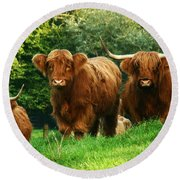 Highland Cattle Round Beach Towel