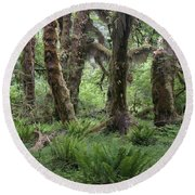 Hoh Rain Forest 3371 Round Beach Towel
