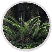 Hoh Rain Forest 3392 Round Beach Towel
