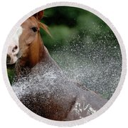 Horse Bath II Round Beach Towel