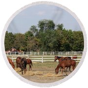 Horses Eat Hay On Ranch Round Beach Towel