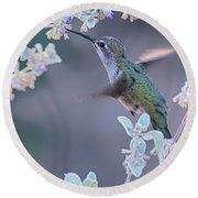 Hummingbird 0091 Round Beach Towel