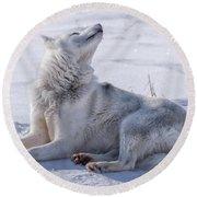 Huskies In Ilulissat, Greenland Round Beach Towel