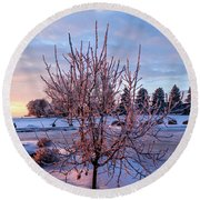 Icy Tree At Sunset  Round Beach Towel