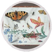 Insects And Garden Pansy Round Beach Towel