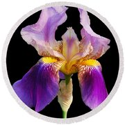 Iris 5 Round Beach Towel