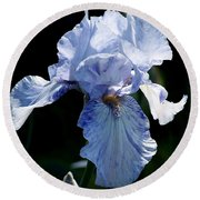 Iris Photograph Round Beach Towel