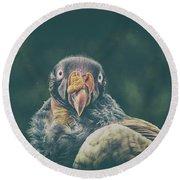 King Vulture Round Beach Towel