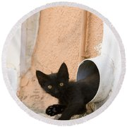 Kitten In A Pipe Round Beach Towel
