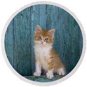 Kitten On A Greek Island Round Beach Towel
