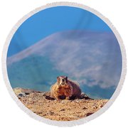 Landscape With Marmot Round Beach Towel