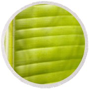 Leaf Close-up Round Beach Towel