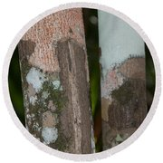 Lichen On The Trees At The Coba Ruins  Round Beach Towel
