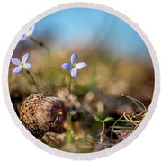 Life Delicate And Strong Round Beach Towel
