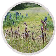Lilac Flower In Green Canvas Spring Has Arrived 2 Round Beach Towel