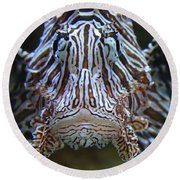 Lion Fish  Round Beach Towel