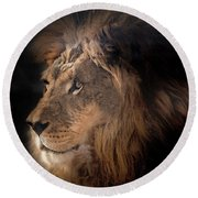 Lion King Of The Jungle Round Beach Towel by James Sage