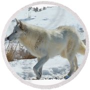 Lone White Wolf Round Beach Towel