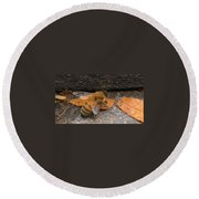 Lost In Direction Round Beach Towel