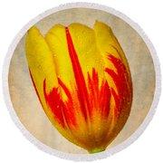 Lovely Textured Tulip Round Beach Towel