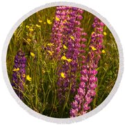 Lupins And Buttercups Round Beach Towel