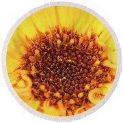 Macro Shot Of A Yellow Flower. Round Beach Towel