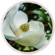 Magnolia Bloom IIi Round Beach Towel