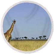 Majestic Giraffe Round Beach Towel